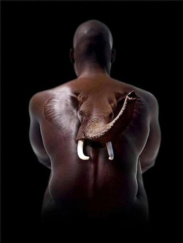 3D elephant on back tattoo