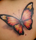 Beautiful 3d Butterfly Tattoo Design