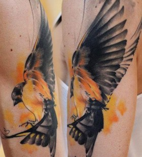 Amazing bird tattoo by Florian Karg