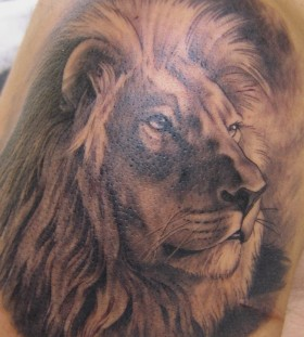 Amazing lion tattoo by Xavier Garcia Boix