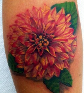 Beautiful dahlia tattoo