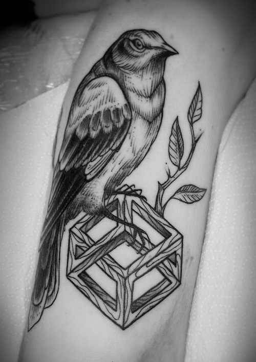 Beautiful mockingbird tattoo