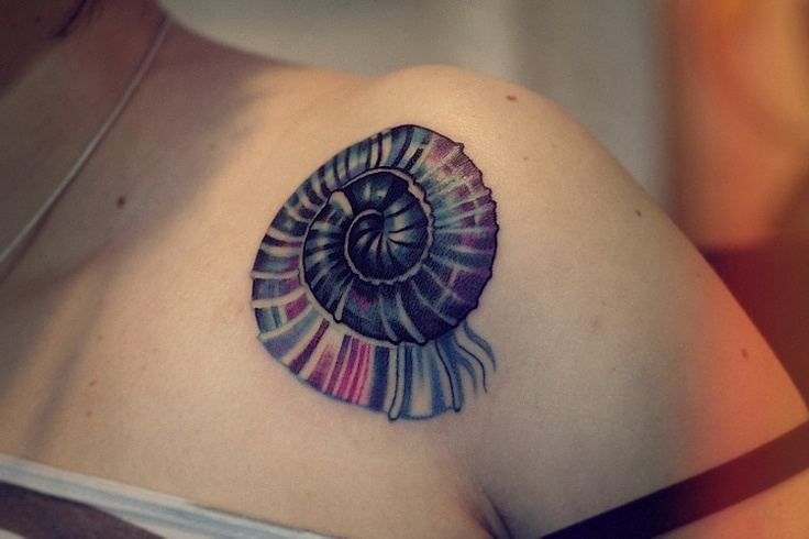 Beautiful sea shell tattoo