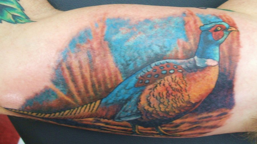 Blue pheasant arm tattoo