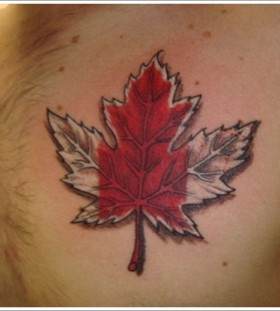 Canadian maple leaf chest tattoo