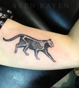 Cat skeleton tattoo