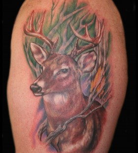 Coloured deer tattoo