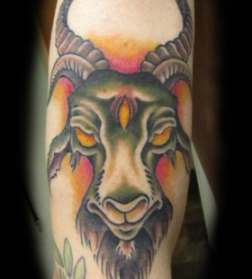 Coloured goat arm tattoo