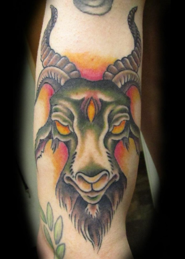 Coloured goat arm tattoo