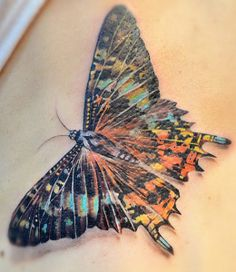 Colourful butterfly tattoo by Elvin Yong