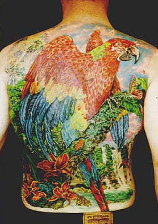 Colourful full back parrot tattoo