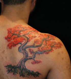 Colourful maple tree back tattoo