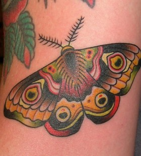 Colourful moth tattoo