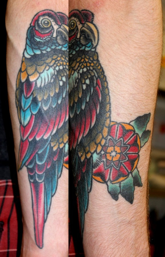 Colourful parrot arm tsttoo