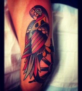 Colourful parrot tattoo by Charley Gerardin