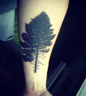 Cool pine tree tattoo