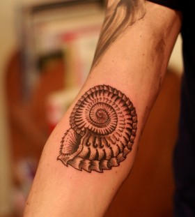 Cool shell arm tattoo