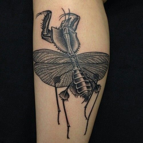 Creepy insect tattoo