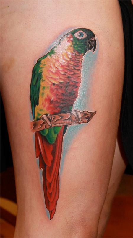 Cute parrot leg tattoo