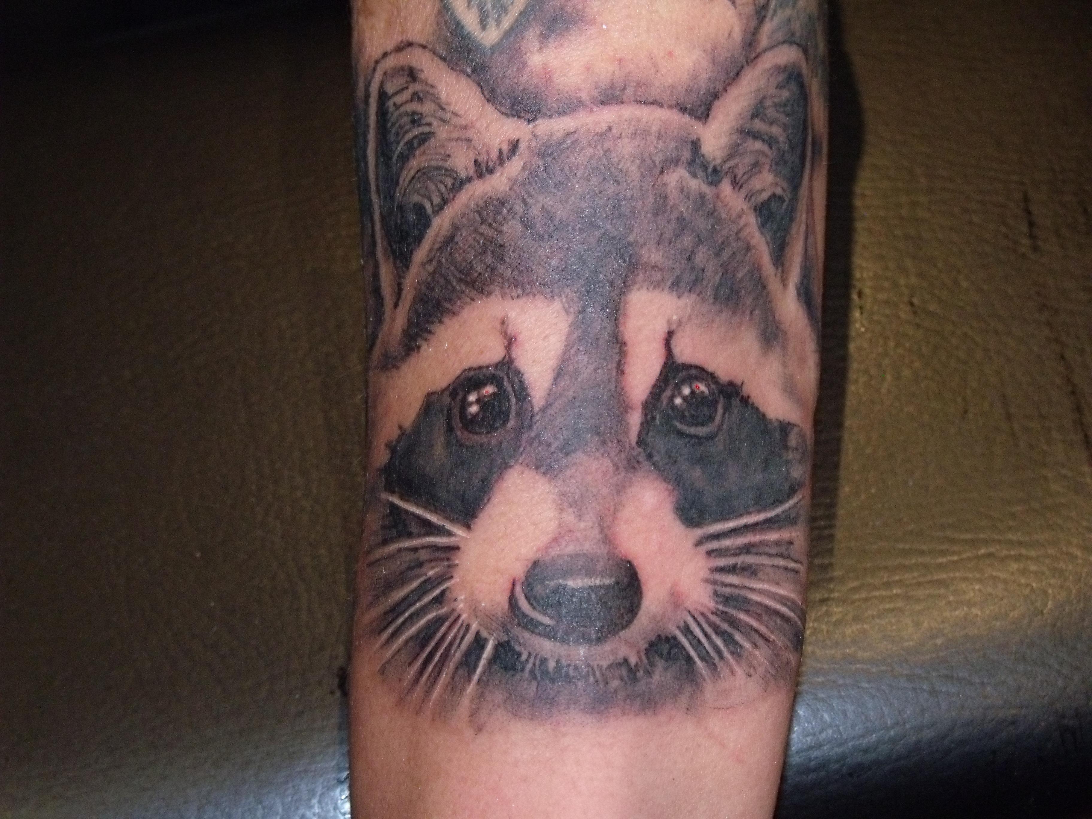 eeba3c1f6 Cute raccoon arm tattoo - | TattooMagz › Tattoo Designs / Ink Works ...