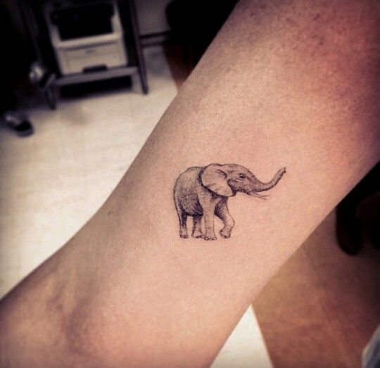 Elephant tattoo by Dr Woo