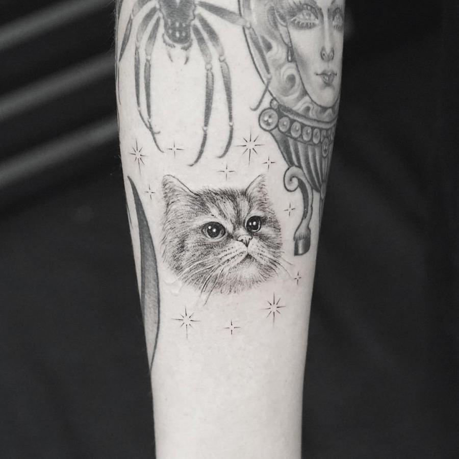 fluffy cat tattoo