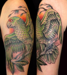 Green parrot arm tattoo