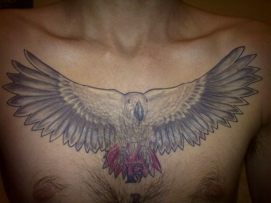 Grey parrot chest tattoo