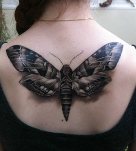Huge moth back tattoo