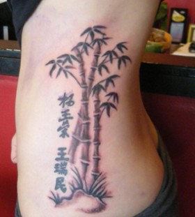 Lovely bamboo side tattoo