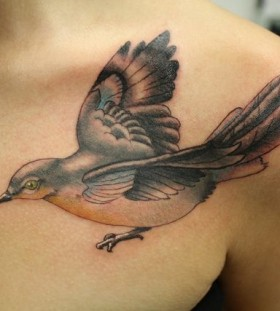 Lovely mockingbird collarbone tattoo