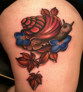Lovely snail tattoo by Amanda Leadman