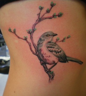 Mockingbird on a branch tattoo