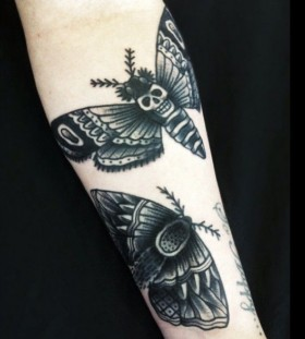 Moth tattoo by Matt Cooley
