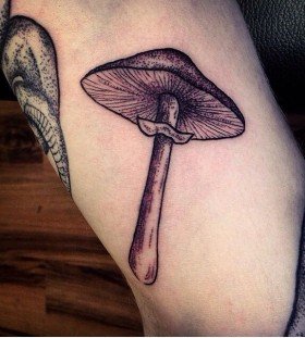 Mushroom tattoo by Rebecca Vincent