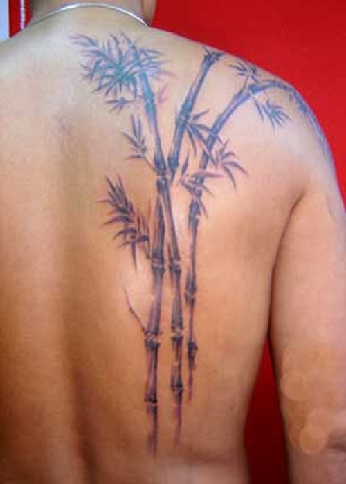 Nice bamboo tree back tattoo