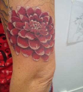 Nice dahlia arm tattoo