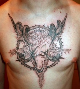 Nice goat chest tattoo