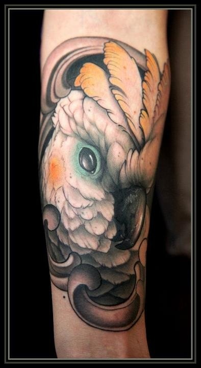 Nice parrot arm tattoo