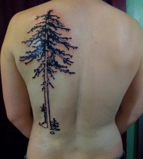 Nice pine tree back tattoo