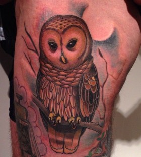 Owl on a branch tattoo by Jon Mesa