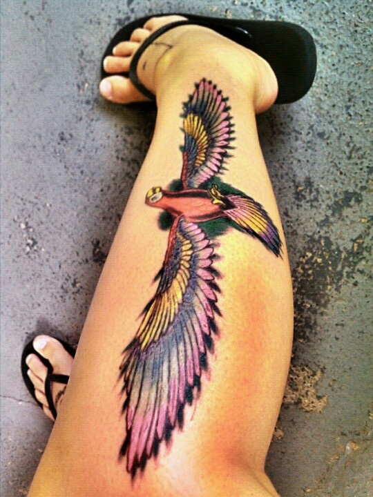 Parrot with long wings leg tattoo
