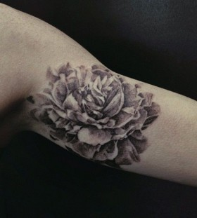 Peony arm tattoo by David Allen