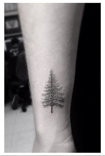 Pine tree tattoo by Dr Woo
