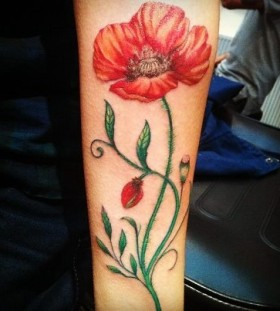 Poppy flower tattoo by Flo Nuttall