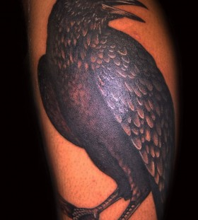 Raven on a branch arm tattoo