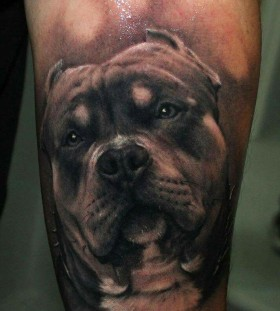 Realistic dog tattoo by Riccardo Cassese