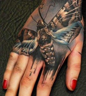 Realistic insect tattoo by Florian Karg