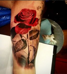 Red rose leg tattoo by Ellen Westholm