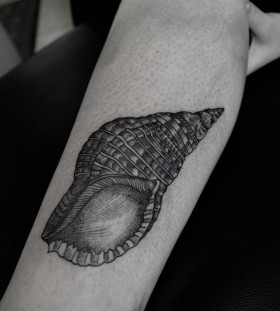 Shell tattoo by Thomas Cardiff